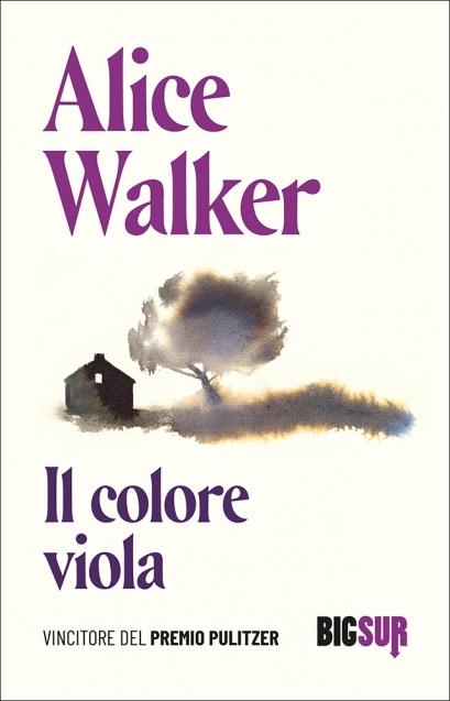 Il colore viola - SUR